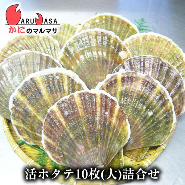 北海道産 冷蔵 活ホタテ貝(大)10枚詰め合わせ