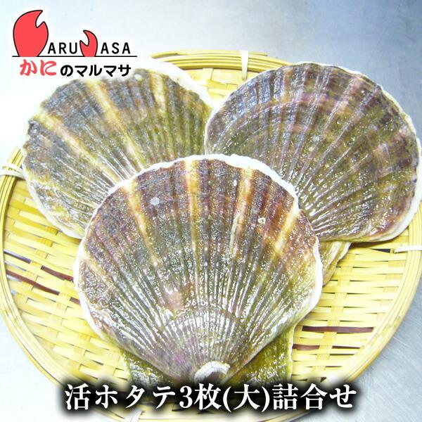 北海道産 冷蔵 活ホタテ貝(大)3枚詰め合わせ