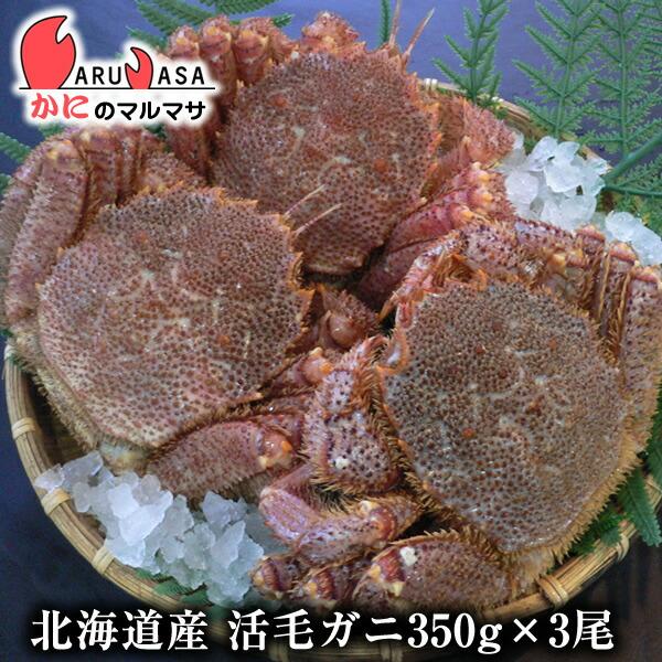 北海道産毛ガニ350g前後×3尾