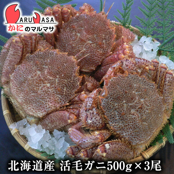 北海道産毛ガニ500g前後×3尾