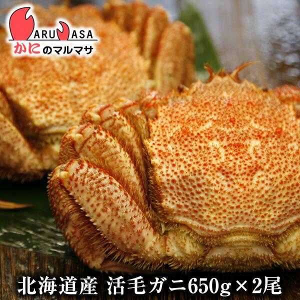 北海道産活毛ガニ650g前後×2尾身入りばっちり!蟹みそがたっぷりつまった毛がに北海道産極上毛蟹!