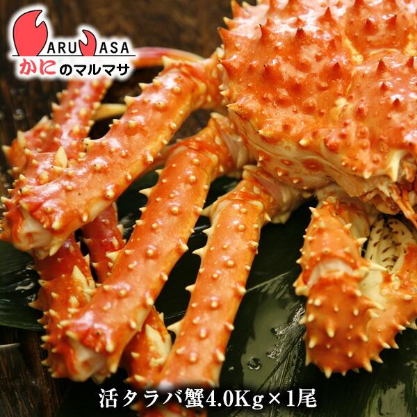 北海道直送 活タラバガニ 4.0kg 期間限定セール カニの王様 本タラバ蟹!