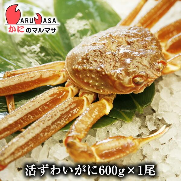 【かにのマルマサ】北海道直送ずわい蟹600g