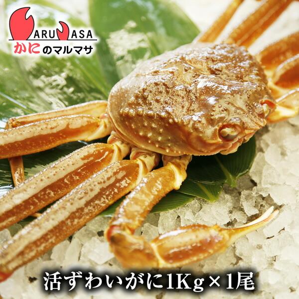 【かにのマルマサ】北海道直送ずわい蟹1.0kg