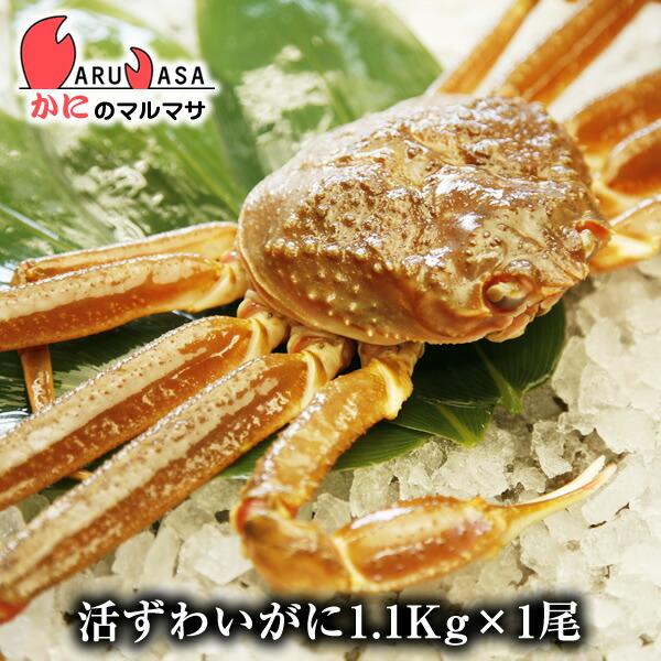 かにのマルマサ 北海道直送 ずわい蟹1.1kg<br />