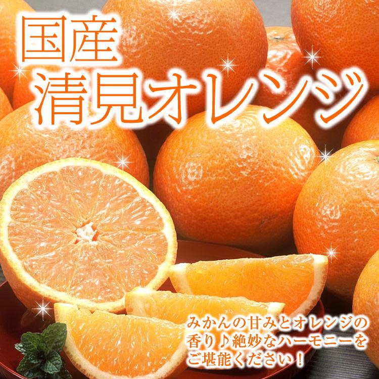 【送料無料】国産 清見オレンジ2kg