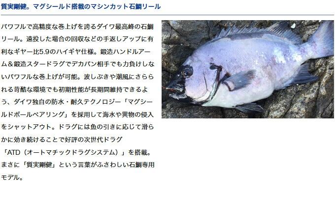 ダイワ 幻覇王 石鯛(3)