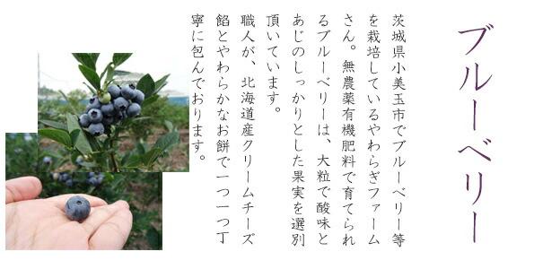 茨城県産ブルーベリーを使用♪島田さんちの極・ぶるーべりー大福