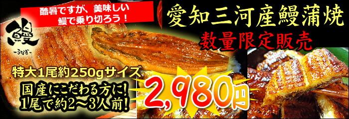 三河産鰻の蒲焼き