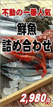 鮮度抜群の魚貝類詰め合わせ
