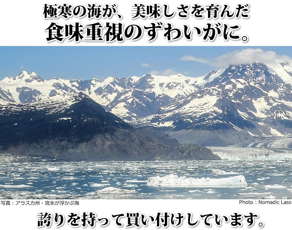 極寒の海が、美味しさを育んだ 食味重視のずわいがに。