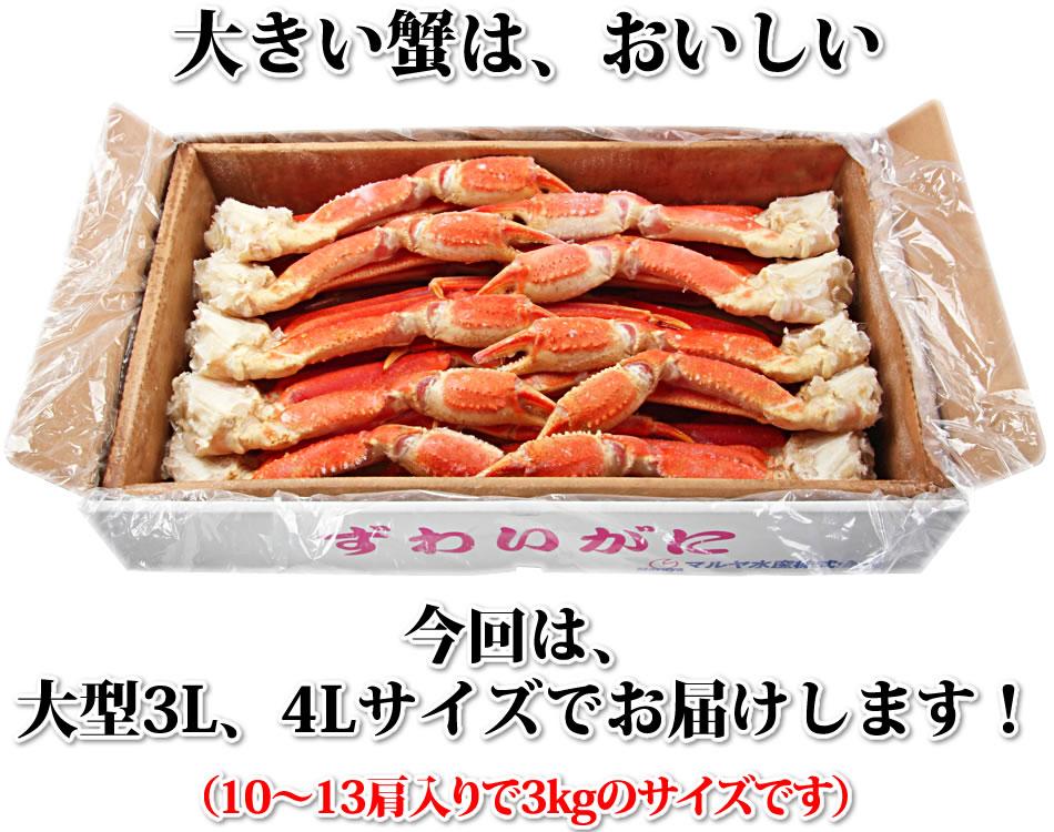 大きい蟹は、おいしい