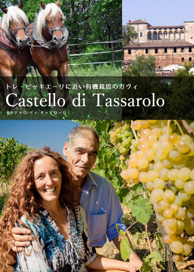 カステッロ・ディ・タッサローロ — トレ・ビッキエーリに近い有機栽培のガヴィ