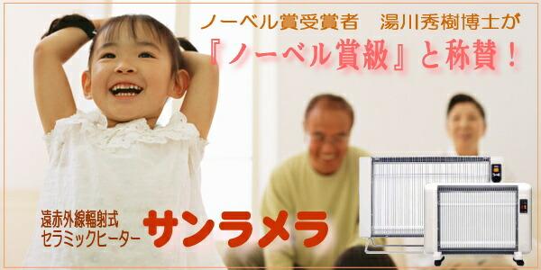 湯川秀樹博士をもって、これはノーベル賞級と言わしめたサンラメラ