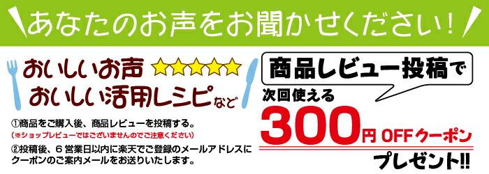 商品レビュー投稿で300円クーポンプレゼント