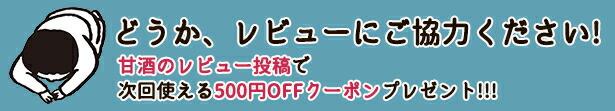 レビュー投稿 500円オフクーポンプレゼント