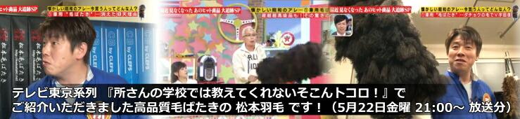 テレビ東京 所ジョージさん 毛バタキ
