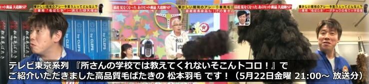 テレビ東京「所さんの学校では教えてくれないそこんトコロ!」で弊社が紹介されました。