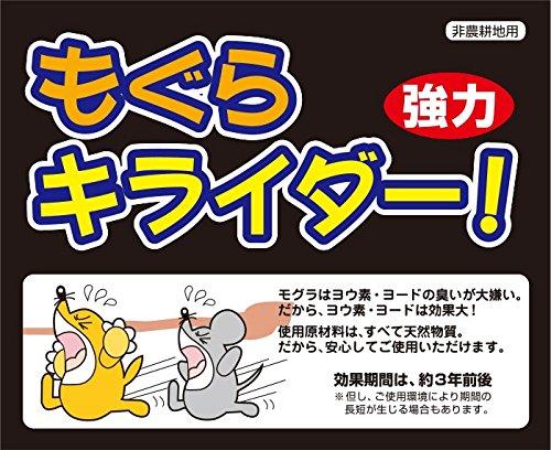 【恒例】佐藤優樹、体調不良でハロコン欠席 YouTube動画>1本 ->画像>47枚