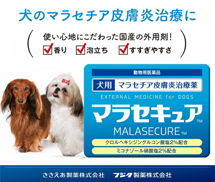 セキュア マラ 【楽天市場】マラセチア皮膚炎治療薬 犬用