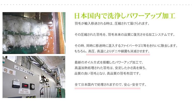 パワーアップ加工 安心の日本製羽毛布団 松並木厳選