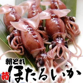 朝とれ茹でホタルイカ(冷蔵)500g
