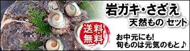 岩牡蠣サザエ