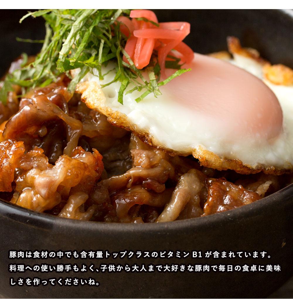 豚肉 国産 宮崎県産 メガ盛り