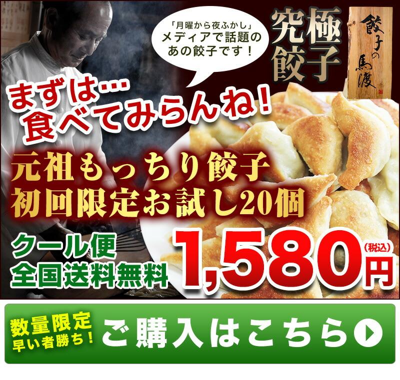 はじめてのお客様限定!もっちり餃子20個1200円送料無料