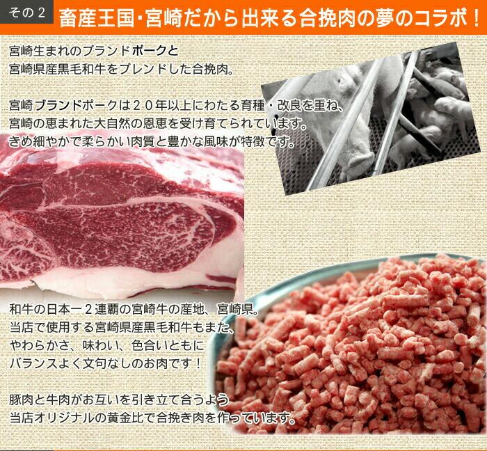 畜産王国宮崎だから出来る合挽き肉の夢のコラボ