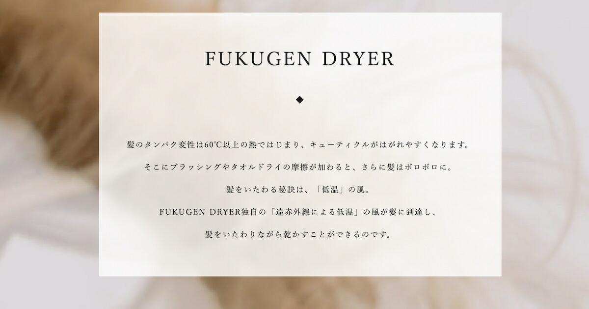 カレア CALEA 【公式】マクセル Maxell IZUMI FUKUGEN DRYER 復元ドライヤー DR-RF365