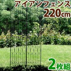 220cm2枚組