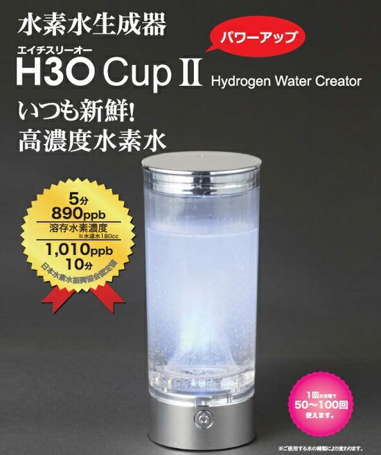 H3Oカップ2