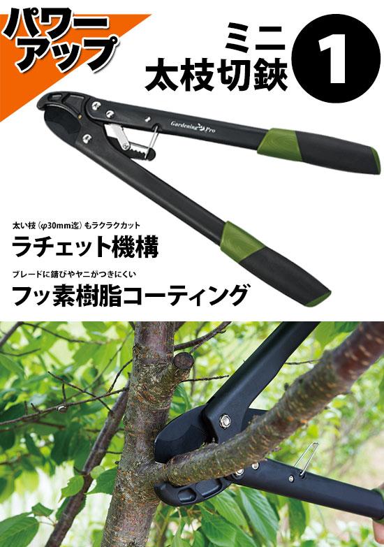 太枝鋏・枝切り鋏・万能はさみの剪定鋏セット