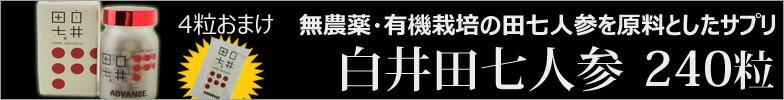 白井田七人参