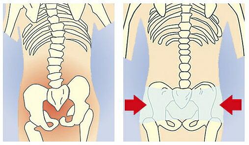 日常生活でゆがみがちな骨盤をしっかりサポートします。