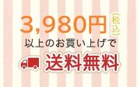 3980円以上ご購入で送料無料