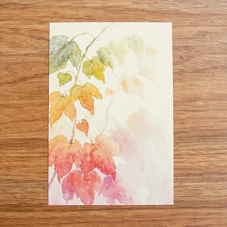 季節のはがき紅葉