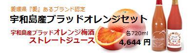 ブラッドオレンジセット