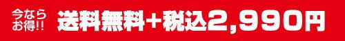 送料無料の¥2,990(税込)特価