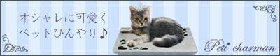 プチシャルマン猫バナー