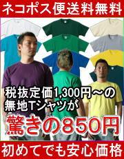 送料無料、無地Tシャツ