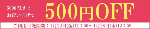 お買い上げ金額から500円オフクーポン