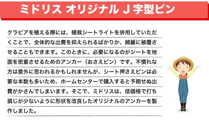 J型ピンはミドリスオリジナル商品