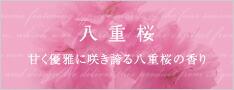八重桜 甘く優雅に咲き誇る八重桜の香り