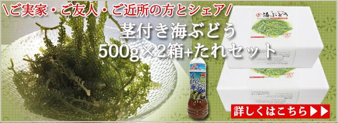 茎タレセット