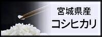 サイドメニューお米 コシヒカリ