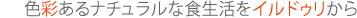 iRUDURi(イルドゥリ)