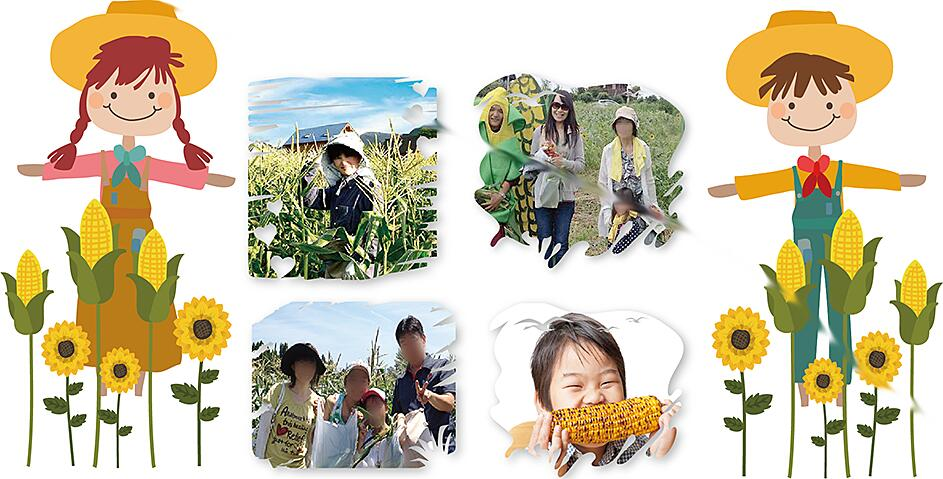 甘いとうもろこし 産直 通販 行列のできる岡山県 ひるぜん農園