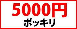 5000en